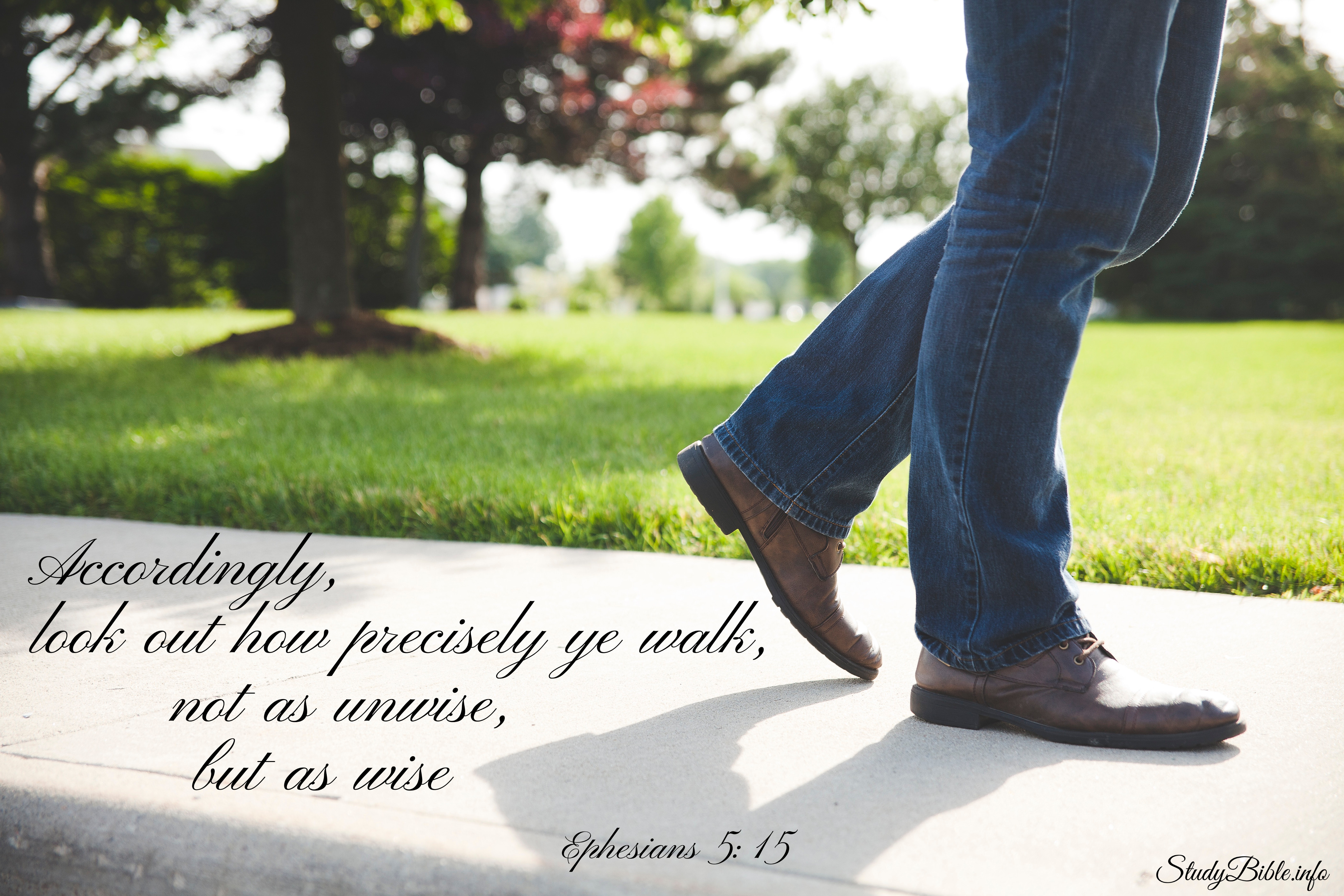 Accordingly , look out how precisely ye walk , not as unwise , but as wise Ephesians 5:15